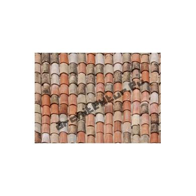 Roof Tiles N°06 Natural