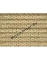 Mur de briques N°01