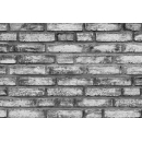 Brick wall N°03 red