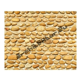 Wall shingle
