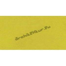 Roughcast Wall N°02 Yellow