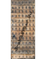Door N°01 Wood