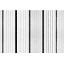 Danpalon Polycarbonate N°02