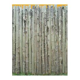 Wood Enclosure N°01