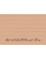 Wood Slat N°12 beech tree