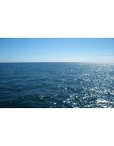 Ocean N°01