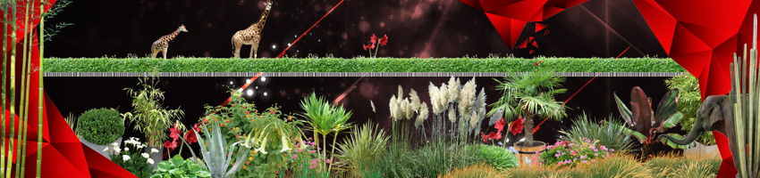 Plantes/haies